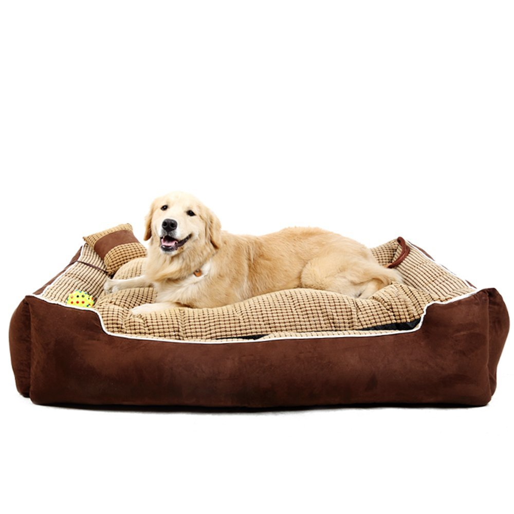 for furniture beds in fancy rent dog on at luxury sale bed bedrooms vallejo